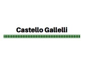 Castello Gallelli