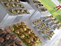 Buffet finger food 1